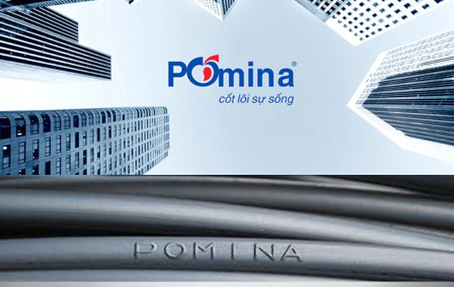 Sản phẩm thép Pomina có mấy loại?