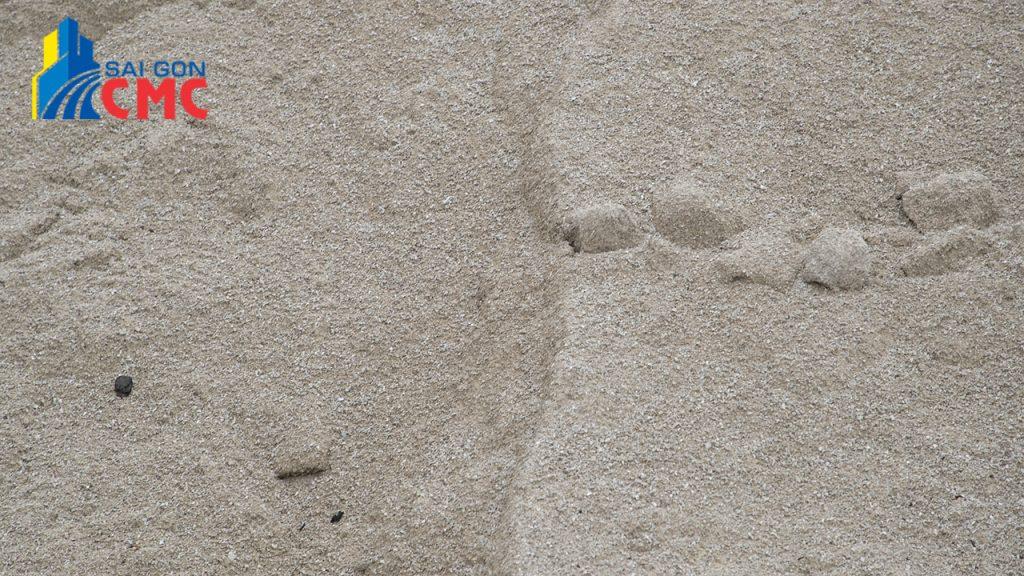 Giá cát san lấp tại Quận 7 năm 2021